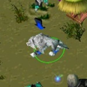 Other Games: the maps we played on WC3 when we didn't feel like playing DotA