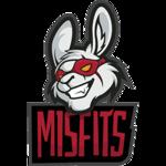 http://i.mineski.net/teams/logos/0af7c631-a41d-41e6-931a-5a20e8434e69/86cfc4b87fbf49db43a12cc4522121de.png?1487145728