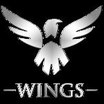 http://i.mineski.net/teams/logos/13988/67dc7a0a8f0e8a23add4b9168bddd6ab.png?1461744984